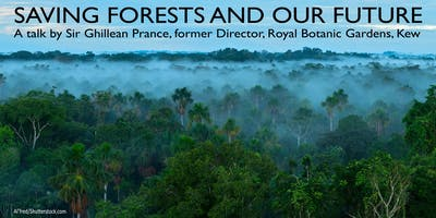 Saving forests and our future