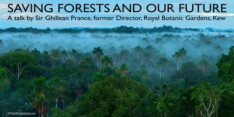 Saving forests and our future tickets