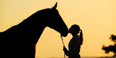 The Equine Element - Discover Your Passion and Purpose with Shelley Rosenberg