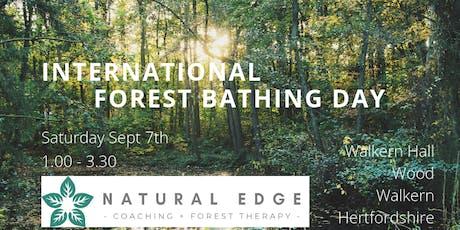 International Forest Bathing Day - Walkern Hall Woods tickets