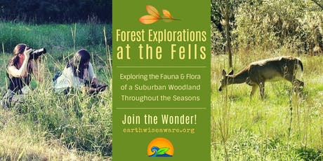 Forest Explorations at the Fells tickets