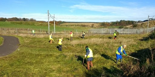 National Cycle Network Scything Task Day, Blackridge, West Lothian