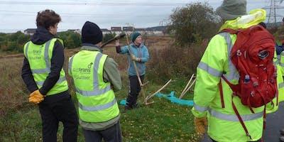 National Cycle Network Scything Task Day, Westburn, South Lanarkshire