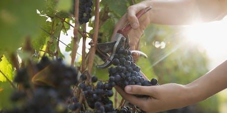 Organic and Biodynamic Wines with Chase Brackenbury tickets