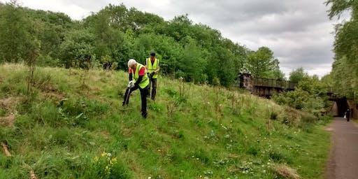 National Cycle Network Scything Task Day, Yoker, Glasgow