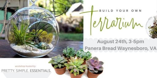 DIY EO Terrarium Workshop