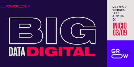 Big Data Digital entradas