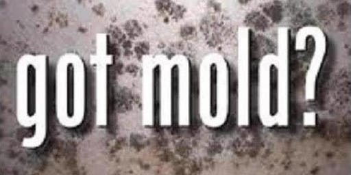 Mold...Not Just Another 4-Letter Word