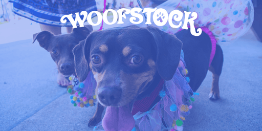 Woofstock 2019 Pawrade Registration