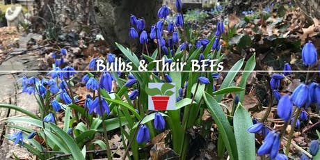 Bulbs & Their BFFs tickets