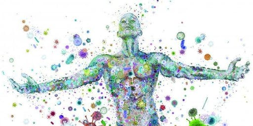 Supporting Your Microbiome from the Inside Out