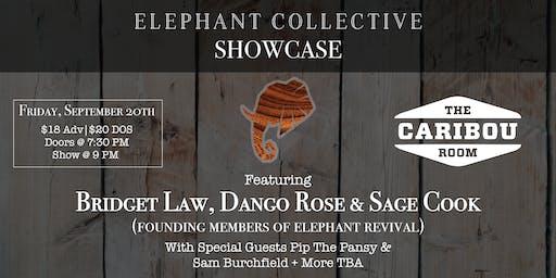 Elephant Collective Showcase
