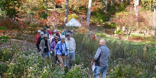 Conservation Woodlands Hike