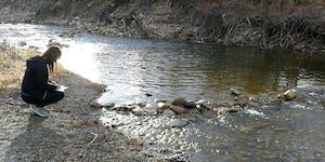 Rock Dams - The Effects of Recreational Rock Dams on...