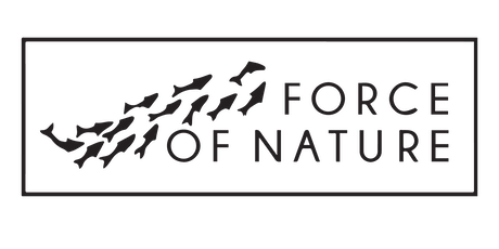 Community Organizing Training Force of Nature tickets