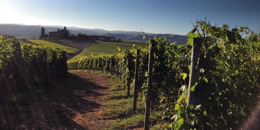 The Three B's: Barolo, Barbaresco, and Brunello