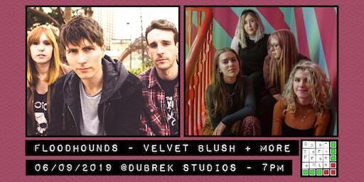 Floodhounds, Velvet Blush at Dubrek Studios