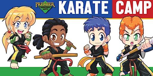 Spring Break Karate Camp
