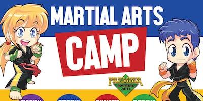 Kickin Karate Summer Camp