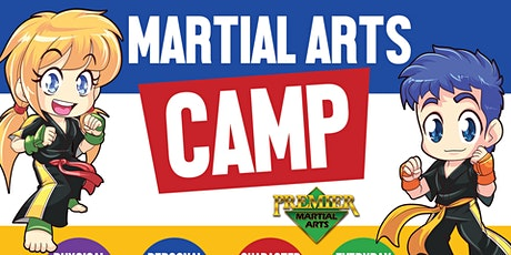 Kickin Karate Summer Camp tickets