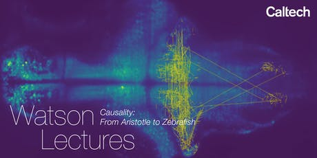 Causality: From Aristotle to Zebrafish tickets