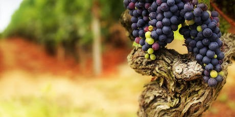 Gnarly Dudes, Old Vine Wines - Beddington tickets