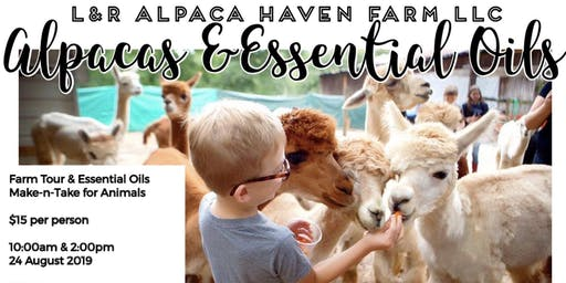Alpaca Farm Tour & Essential Oil Make-n-Take