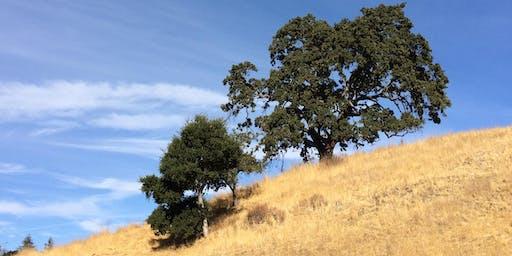 Byrne Brigade: Habitat Restoration at Byrne Preserve