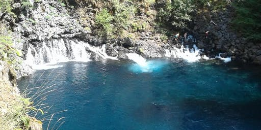 Blue Pool at Tamolitch Falls Hike