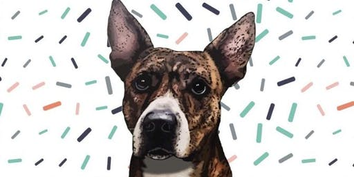 Dogs Eating Cake presents: Make & Take Dog Cake