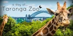 Taylors College - ASA Taronga Zoo Excursion, Term 2, 2019