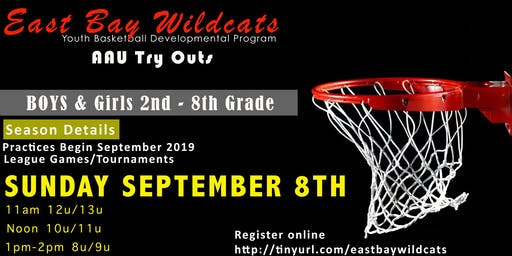 East Bay Wildcats Fall Youth Basketball Try Outs