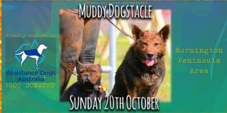 Paws Explores MUDDY DOGSTACLE Adventure 2019 tickets
