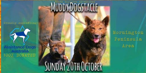 Paws Explores MUDDY DOGSTACLE Adventure 2019