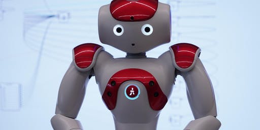Programming Ruby the NAO Robot ages 8-14