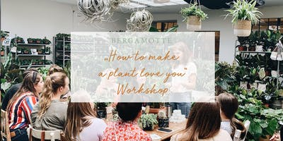 """BERGAMOTTE // \""""How to make a plant love you\"""" Workshop"""