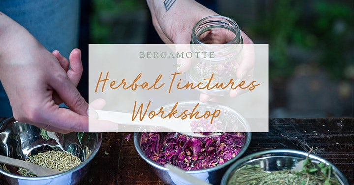 BERGAMOTTE // Herbal Tinctures Workshop: Bild
