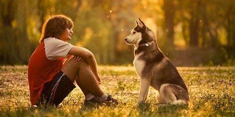 Taal van de hond - basis billets