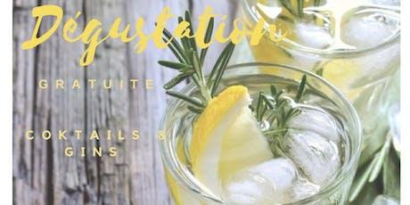 Soirée cocktail gin fizz billets