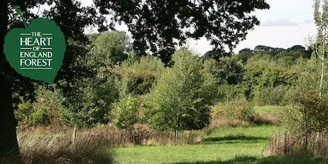 Guided Walk: Woodland Wander looking at Pest and Diseases tickets