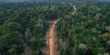 Naturparadiese mit Zukunft: Kongo – Schutz für den Gorillawald Tickets