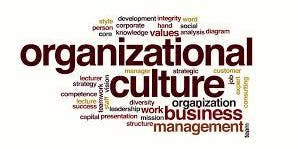 Cracking the Organizational Culture Code