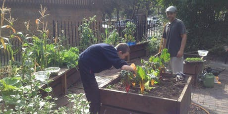 Free Gardening Course for 18-26 year olds from Lambeth tickets