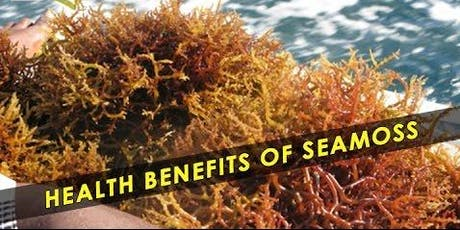SEA MOSS HEALTH COURSE tickets