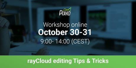 rayCloud editing Tips & Tricks workshop - Online tickets