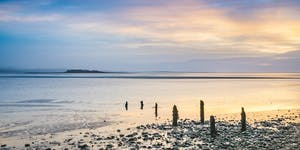 Morecambe Bay's Tidal Islands - Guided walk to Chapel...