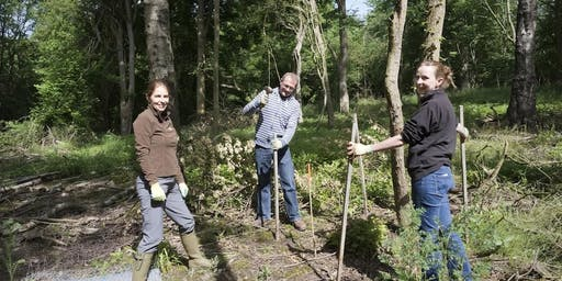 Volunteering Saturday - Helping, hands on in the Heart of England Forest