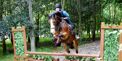Autumn Confidence Boost for Horse Riders