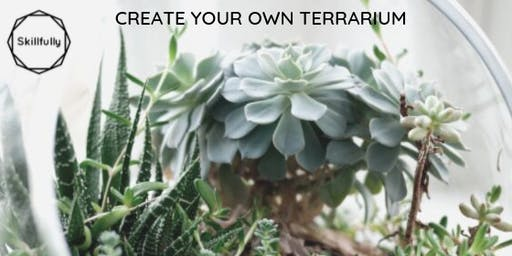 Make your Own Terrarium  Session 1 Toronto October 27, 2019 11:00 am
