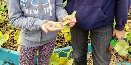 Atelier de conservation des semences/seed saving workshop tickets